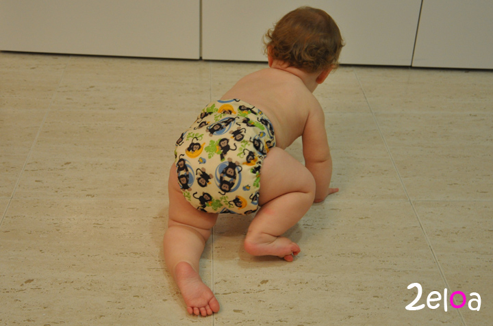 Bebé gateando - www.2eloa.com